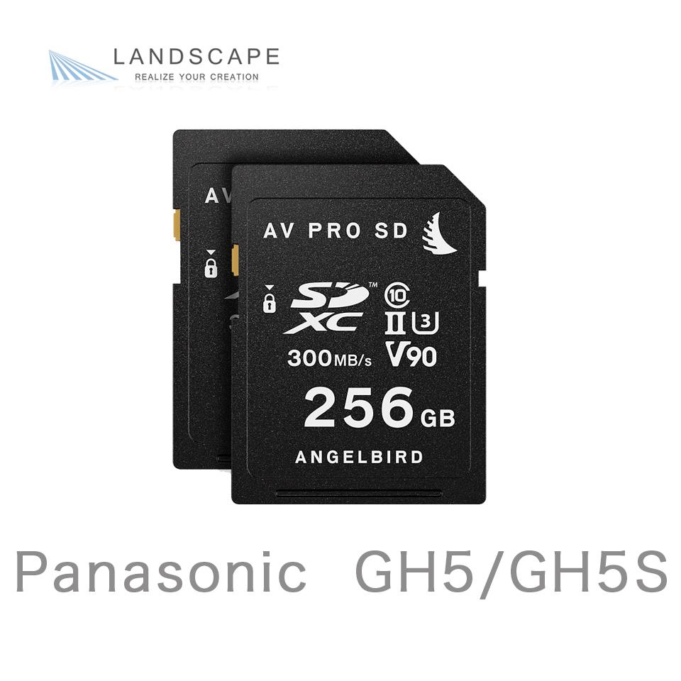 AngelbirdMATCH PACK for GH5/GH5S 256GB x 2(MP-GH5-256SDX2)