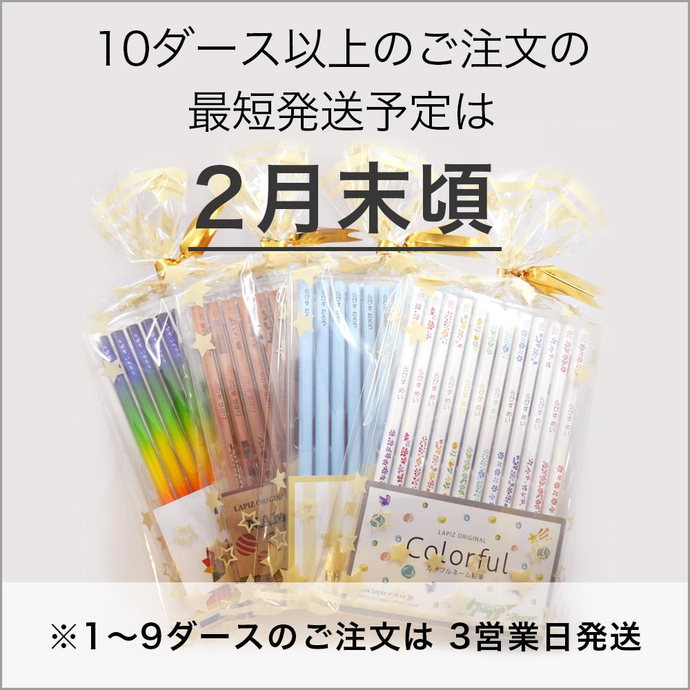 Pastel pencils + rearing neemu colored pencil set