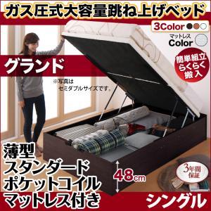 跳ね上げ式ベッド 簡単組立 らくらく搬入 ガス圧式 大容量 跳ね上げベッド Mysel マイセル 薄型スタンダードポケットコイルマットレス付き 縦開き シングル 深さグランド(代引不可)(NP後払不可)