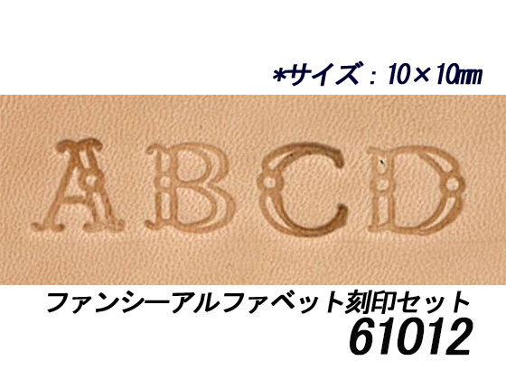 Fancy Alphabet Stamp Set 10 Mm 26 Book OPS Hex El Leather Craft And Numbers Imprinted