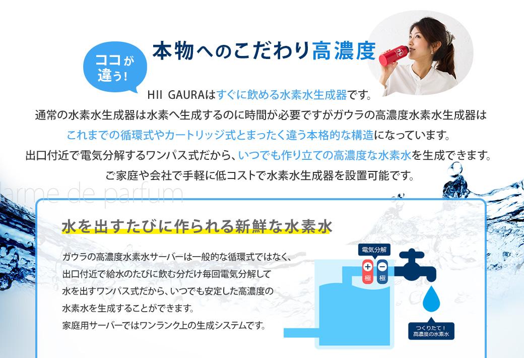 ldpr: 支持氫水發電機氫水伺服器H2GAURA(H2 gaura)日本製造自來水直接 ...