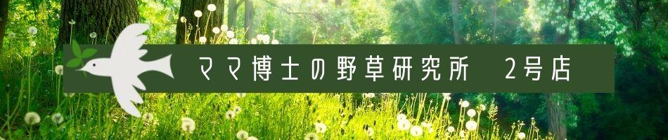 ママ博士の野草研究所 2号店:体に優しい ノンカフェイン の 野草 抹茶 を販売しています。