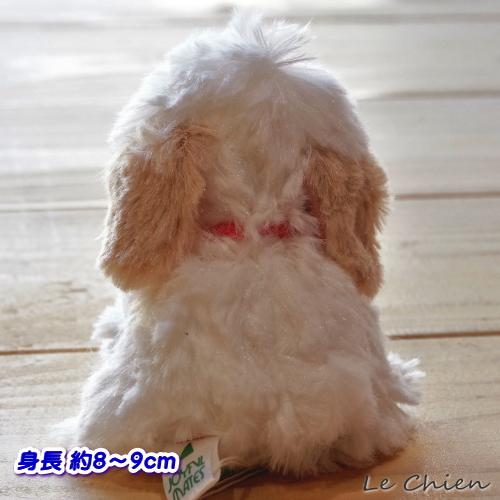 犬のぬいぐるみプチお座りドッグ【プードル・ホワイト】 (ぬいぐるみ 犬 犬グッズ 子犬 犬雑貨 おもちゃ 動物一般 おもちゃ プレゼント) 卒業式 プレゼント ギフト  お返し ルシアン