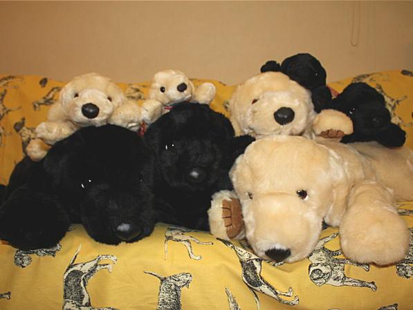 人形の吉徳 ヨシトク ラブラドールレトリバーぬいぐるみ L 全長約80cm前後 犬グッズ 犬雑貨 ラブ おもちゃ プレゼントにおすすめ ギフト 誕生日 サプライズ バースデー 記念日 動物 結婚祝い 出産祝い アニマル