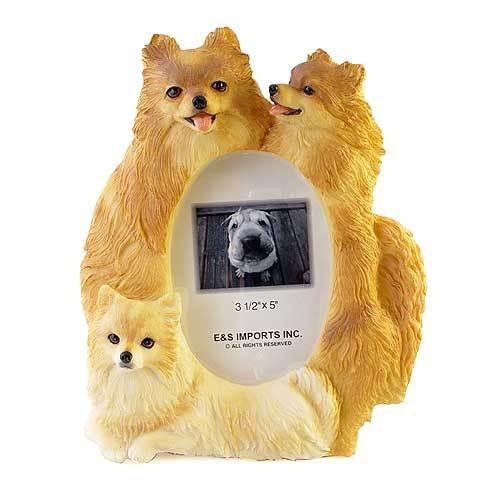 ピクチャーフレーム(スタンダード) ポメラニアン2(縦型)(from USA)(フォトフレーム フォトスタンド 犬グッズ 写真立て 写真たて 記念品 輸入雑貨 出産祝い 犬雑貨) 卒業式 プレゼント ギフト お返し ルシアン