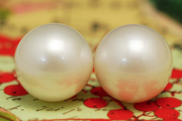 The presence that is overwhelming so as to seem to run it down! Unprecedented white butterfly pearl 15 millimeters pierced earrings!