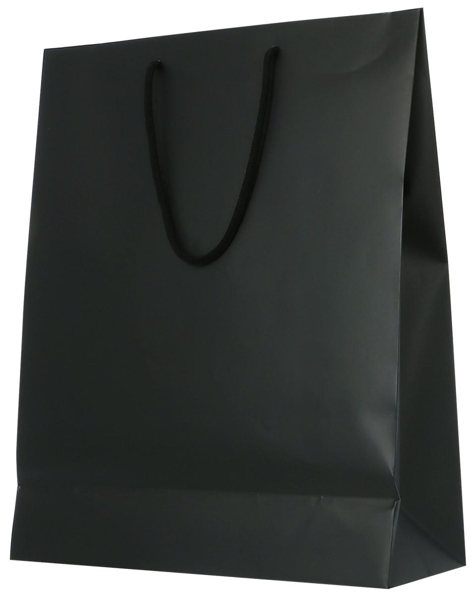 ショップ 最安値 オブ ザ 休日 イヤー 3本用 ギフトバッグ 5年連続受賞店舗