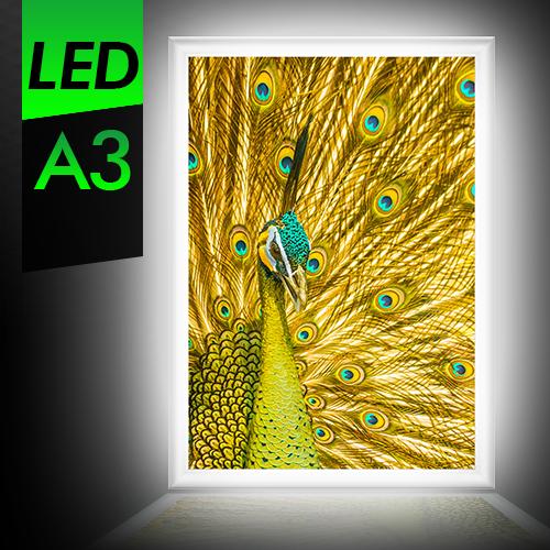 A3 屋内 LEDパネル LED看板 軽量アルミフレーム