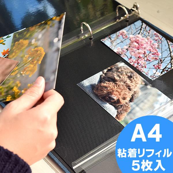 PDフォトアルバム ML A4 サイズ用 粘着リフィル5枚入り リング式フォトアルバム 手作り 迅速な対応で商品をお届け致します アルバム デルフォニクス 粘着ML 粘着台紙 日本最大級の品揃え デルフォニックス リフィル 240147 DELFONICS