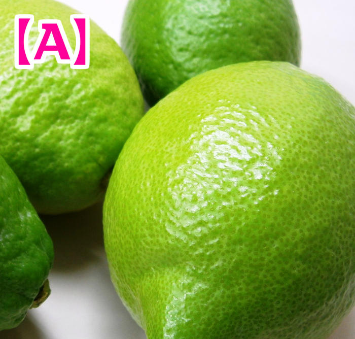 真夏はグリーンレモンをどうぞ 高品質 国産 広島県尾道市瀬戸田町産レモン 2.0kg 防腐剤 A品 ※お届け指定日に対応できない場合があります⇒ご了承くださいませ 海外限定 防かび剤不使用 皮ごと食べて安心 ノーワックス