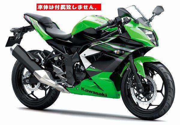 K's-Style (ケーズスタイル ケイズスタイル) デカールキット グリーン カワサキ Ninja250SL (ニンジャ250SL) 2015以降 KS-KN250SL-001GRN (返品 交換不可商品) (送料が別途1000円掛かります)
