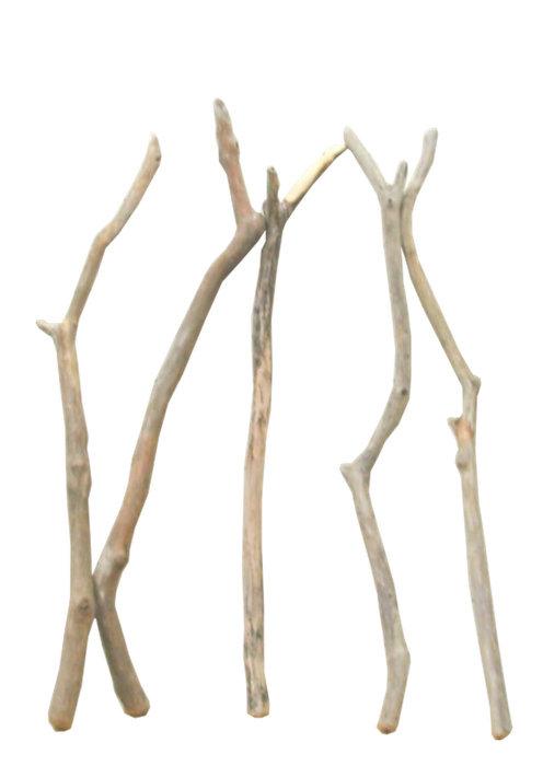 大枝細枝流木5本セット f247 DIYガーデニング園芸工作用インテリア店舗ディスプレイや撮影用に 、そのまま使えるきれいに処理された流木枝素材