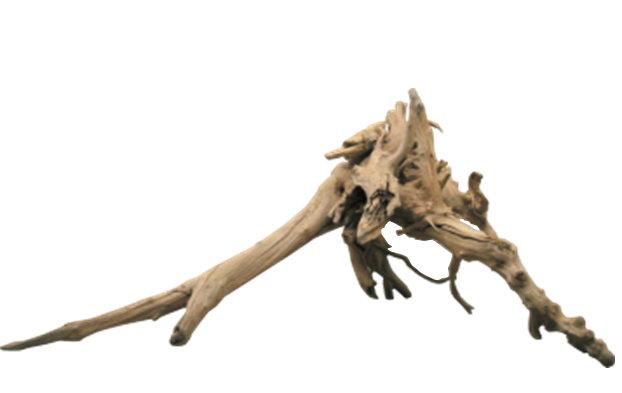 大型変形流木根 h336 インテリア店舗ディスプレイ用ガーデニング園芸華材撮影用爬虫類用流木素材