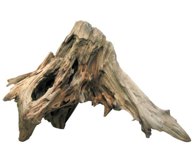 大型流木切り株根 h341 ディスプレイ用 アクアリュウム用 ガーデニング園芸材 撮影用 爬虫類用流木素材