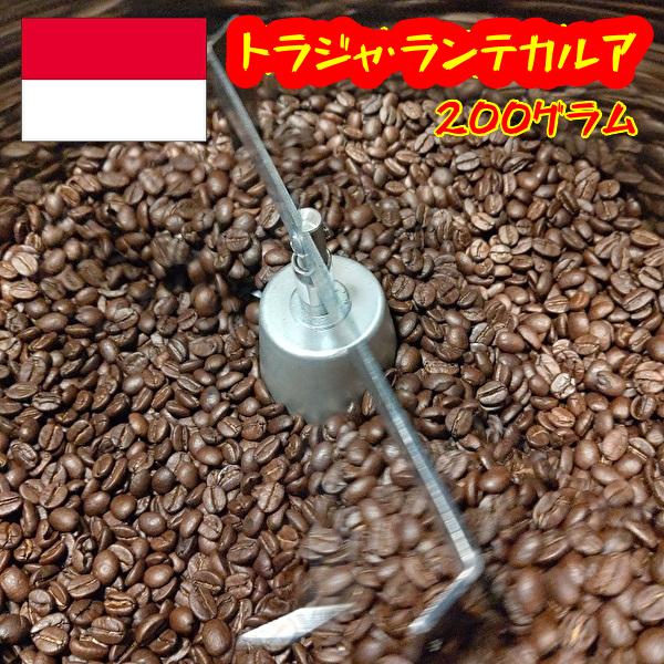 トラジャのスペシャリティコーヒー豆が入荷 コーヒー豆 コーヒー 大特価!! コーヒー粉 トラジャスペシャリティコーヒー豆200グラム 珈琲豆 即納最大半額
