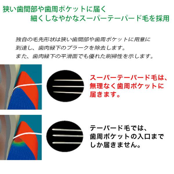 値下げ 歯ブラシ ライオン DENT.EX システマ 44M  …