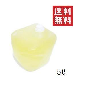 【!!クーポン配布中!!】 フローラ 消臭 植物性消臭液 ニオイノンノ 5L 大容量 業務用