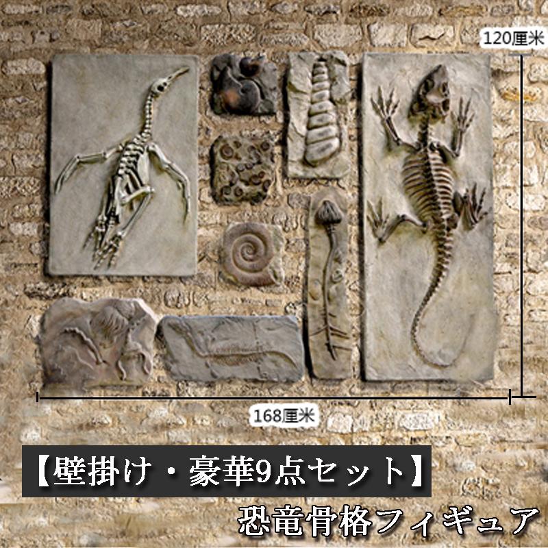 [予約販売]【関東限定送料無料】【壁掛け・豪華9点セット】恐竜骨格フィギュア 植物化石 貝化石