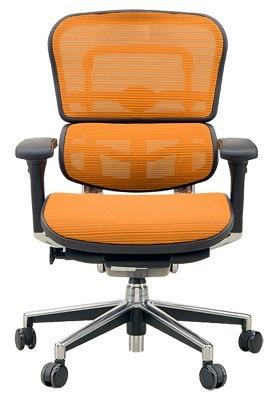 *【送料無料!!(一部地域除く)】Ergohuman[エルゴヒューマン] Ergohuman Basic[エルゴヒューマンベーシック] ロータイプ EH-LAM※代引不可商品(家具・椅子・チェア・オフィスチェア・デスクチェア・腰痛・イス)