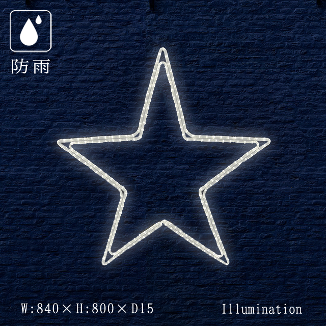 業務用 イルミネーション モチーフ 2D クリスマス 屋外 防雨 LED ロープライト ペインタスター A 大