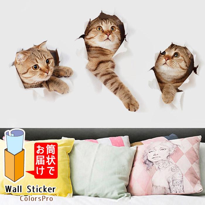 ランキングTOP5 おしゃれでかわいいウォールステッカー ワンポイント貼るだけでおうちやお店の雰囲気が華やかに 窓や浴室にも 子供部屋 簡単DIY インスタ映え ウォールステッカー 猫 ねこ 動物 トリックアート 壁から インテリアシール 全店販売中 飛び出す Wallsticker 茶トラ ウォールシール 壁飾り 3D おもしろ ウォールシート カフェ はがせる