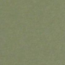 『撮影照明・撮影機材専門店』ライトグラフィカ 撮影用背景紙バックペーパー #10d リーフ 2.72×11m○写真撮影背景 紙バック スタジオ バックシート 背景布 背景紙 商品撮影 背景布 撮影用 撮影 バックペーパー撮影 照明 セット○