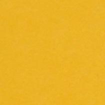 『撮影照明・撮影機材専門店』ライトグラフィカ 撮影用背景紙バックペーパー #14d フォーシャイイエロー 2.72×11m○写真撮影背景 紙バック スタジオ バックシート 背景布 背景紙 商品撮影 背景布 撮影用 撮影 バックペーパー撮影 照明 セット○