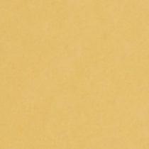 『撮影照明・撮影機材専門店』ライトグラフィカ 撮影用背景紙バックペーパー #18d パフ 2.72×11m○写真撮影背景 紙バック スタジオ バックシート 背景布 背景紙 商品撮影 背景布 撮影用 撮影 バックペーパー撮影 照明 セット○