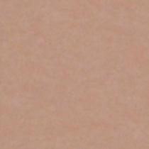 撮影機材の専門店 東京発 即日出荷可 写真撮影背景 背景布 背景紙 商品撮影 撮影用 撮影 バックペーパー撮影 照明 入手困難 撮影機材 スタジオ 1.35×5.5m○写真撮影背景 撮影用背景紙バックペーパー ライトグラフィカ ベイジュ 撮影機材専門店 セット○ ランキング総合1位 紙バック #25c バックシート 撮影照明