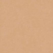撮影機材の専門店 東京発 即日出荷可 写真撮影背景 背景布 背景紙 商品撮影 撮影用 撮影 バックペーパー撮影 照明 撮影機材 オンラインショップ セット○ ライトグラフィカ 撮影照明 #26c 1.35×5.5m○写真撮影背景 紙バック バックシート 美品 スタジオ 撮影機材専門店 ポンジー 撮影用背景紙バックペーパー