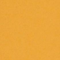 撮影機材の専門店 東京発 即日出荷可 写真撮影背景 国内送料無料 背景布 背景紙 商品撮影 撮影用 撮影 バックペーパー撮影 照明 撮影機材 紙バック ライトグラフィカ セット○ バックシート イエローオレンジ #35d 撮影機材専門店 2.72×11m○写真撮影背景 撮影照明 スタジオ 本日限定 撮影用背景紙バックペーパー