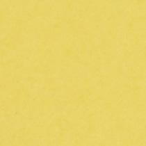 『撮影照明・撮影機材専門店』ライトグラフィカ 撮影用背景紙バックペーパー #50d アスペン 2.72×11m○写真撮影背景 紙バック スタジオ バックシート 背景布 背景紙 商品撮影 背景布 撮影用 撮影 バックペーパー撮影 照明 セット○