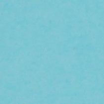 『撮影照明・撮影機材専門店』ライトグラフィカ 撮影用背景紙バックペーパー #55d アルパイン 2.72×11m○写真撮影背景 紙バック スタジオ バックシート 背景布 背景紙 商品撮影 背景布 撮影用 撮影 バックペーパー撮影 照明 セット○