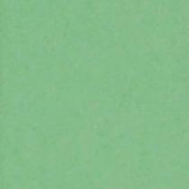 撮影機材の専門店 東京発 即日出荷可 写真撮影背景 背景布 背景紙 商品撮影 撮影用 撮影 バックペーパー撮影 照明 撮影機材 #63d バックシート 撮影照明 ライトグラフィカ セット○ アップル スタジオ 2.72×11m○写真撮影背景 正規品 撮影用背景紙バックペーパー オーバーのアイテム取扱☆ 紙バック 撮影機材専門店