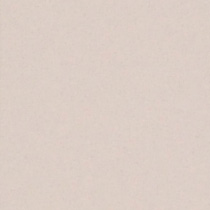 『撮影照明・撮影機材専門店』ライトグラフィカ 撮影用背景紙バックペーパー #64d ファウン 2.72×11m○写真撮影背景 紙バック スタジオ バックシート 背景布 背景紙 商品撮影 背景布 撮影用 撮影 バックペーパー撮影 照明 セット○
