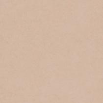 撮影機材の専門店 キャンペーンもお見逃しなく 東京発 即日出荷可 写真撮影背景 背景布 背景紙 日本限定 商品撮影 撮影用 撮影 バックペーパー撮影 照明 撮影機材 ライトグラフィカ セット○ 撮影照明 撮影用背景紙バックペーパー 撮影機材専門店 #66c バックシート 1.35×5.5m○写真撮影背景 スタジオ フィート 紙バック