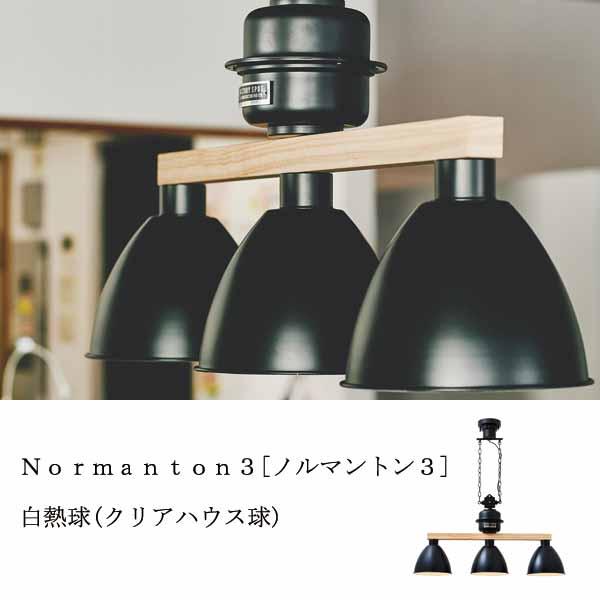 Normanton3 [ノルマントン3] 白熱球(クリアハウス球)付  0252-li-lt-3042