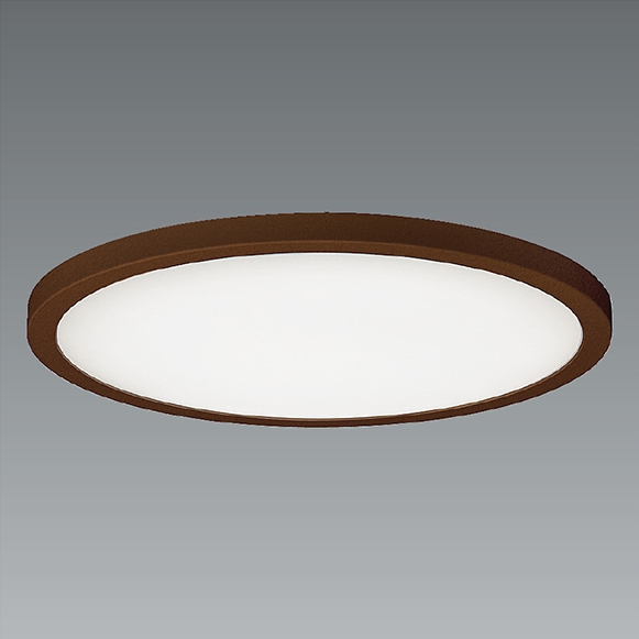 ENDO 遠藤照明(V) LED調光調色シーリングライト ERG5496UB