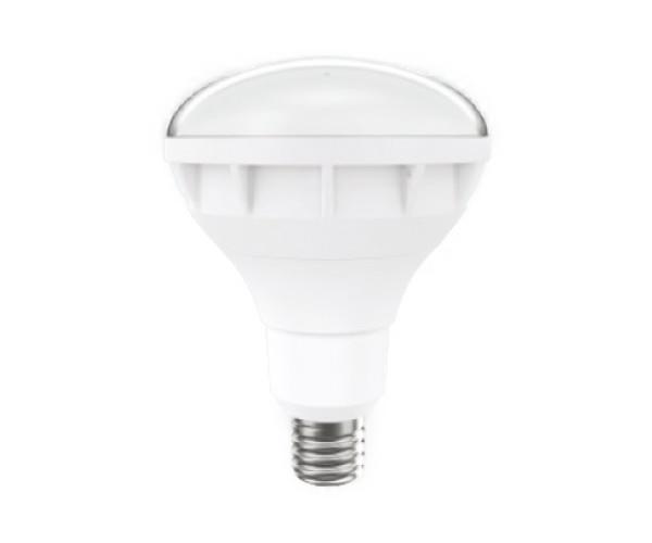 ENDO 遠藤照明(V)LEDアウトドアランプ(本体別売) RAD590W