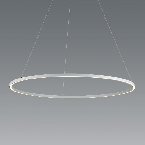 ENDO 遠藤照明 LEDペンダント ERP7395WA