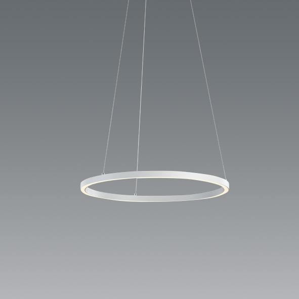 ENDO 遠藤照明 LEDペンダント ERP7397WA