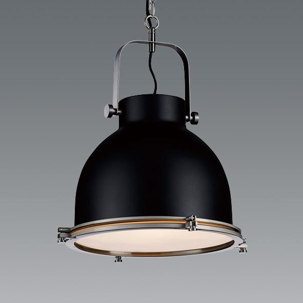 ENDO 遠藤照明 LEDペンダント(ランプ別売) ERP7433BB