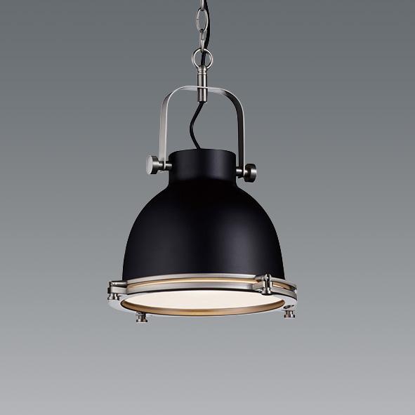 ENDO 遠藤照明 LEDペンダント(ランプ別売) ERP7434BB