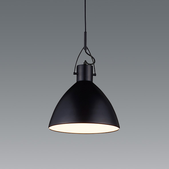 ENDO 遠藤照明 LEDペンダント(ランプ別売) ERP7456BB