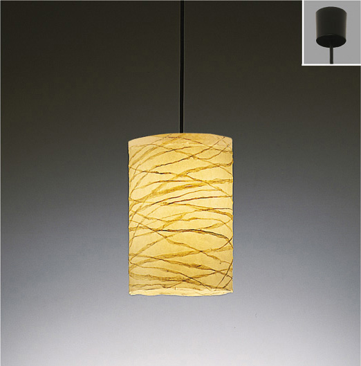 ENDO 遠藤照明 LEDペンダント(ランプ別売) ERP7120NB