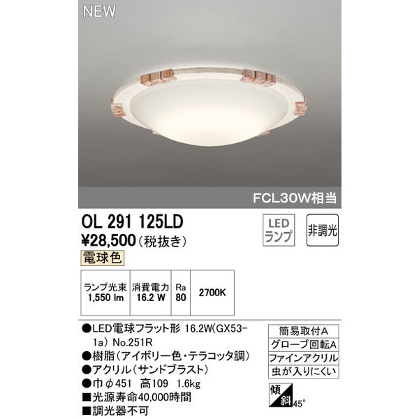 ODELICオーデリックLED小型シーリングライトOL291125LD