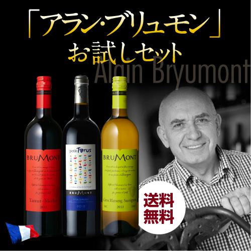 お試し♪送料無料ACマディランと人気のガスコーニュのセット アラン・ブリュモンお試し3本セット【送料無料】[ワインセット][長S] 母の日 父の日 ドリンク 酒