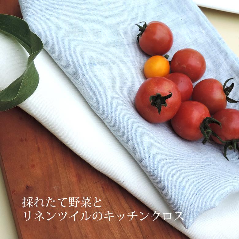 高級麻リネンのキッチンクロス リネン キッチンクロス ツイル 麻 登場大人気アイテム 日本製 お得な2枚組 100% 再再販