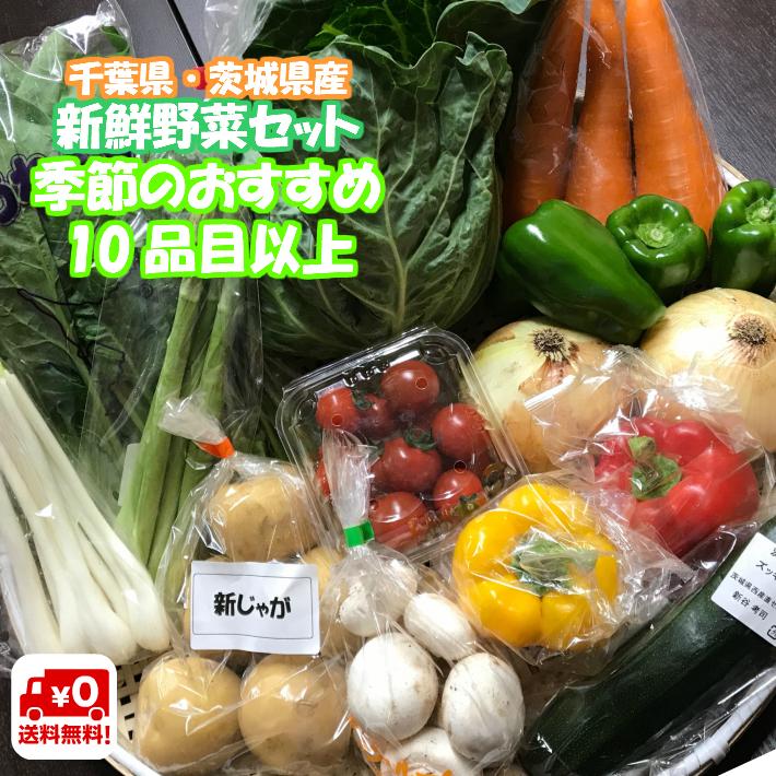 野菜 旬の野菜を 本物 詰め合わせ 新鮮 採れたて 使いやすい 定番野菜を中心にお送りします 送料無料 産直 旬 茨城県産 別途送料がかかります 千葉県産 新生活 10品目以上 野菜セット 夏季クール便対応