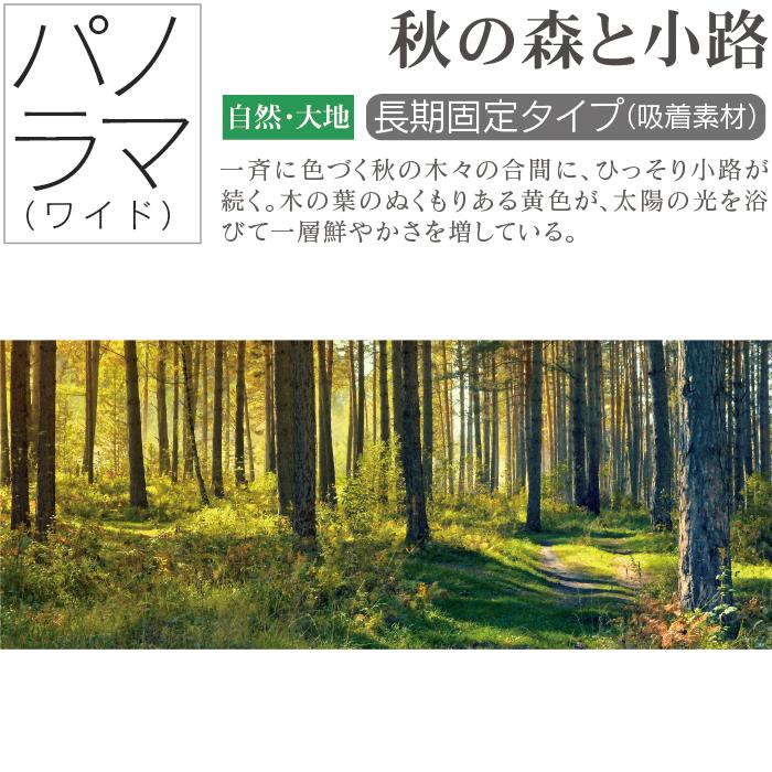 お風呂ポスター 秋の森と小路 パノラマ(105×42cm) 長期固定タイプ(吸着素材)